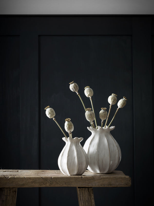 Dried Poppy Stems