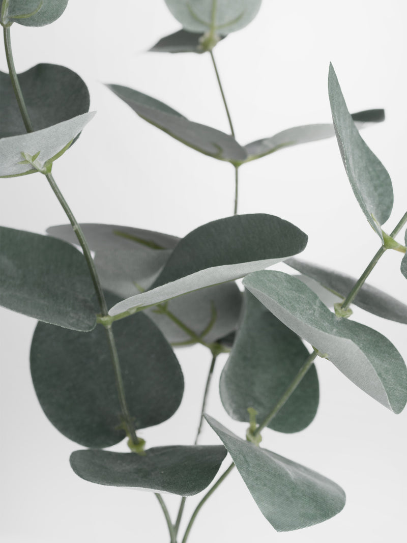 faux eucalyptus sprig  close up