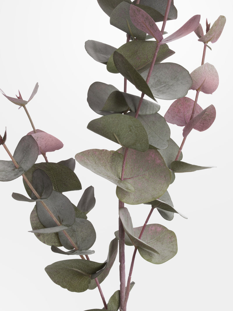 faux blush eucalyptus stem close up