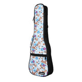 CloudMusic Ukulele Case2016-24