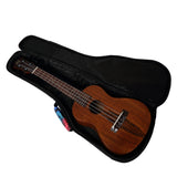 CloudMusic Ukulele Case2016-23