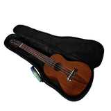 CloudMusic Ukulele Case2016-20