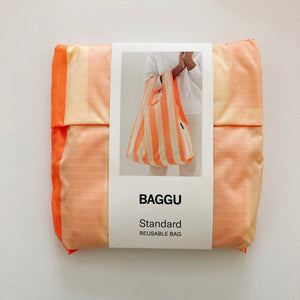 Baggu Reusable standard Washed Brick Stripe