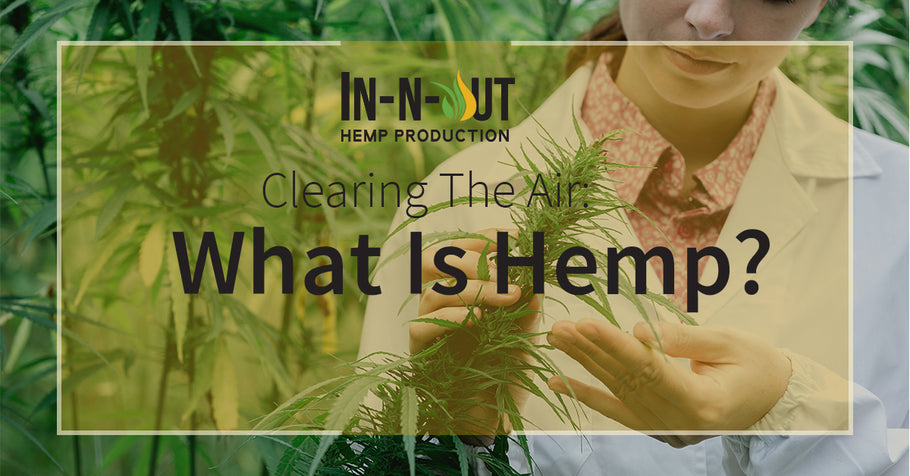 Clearing the Air: What Is Hemp
