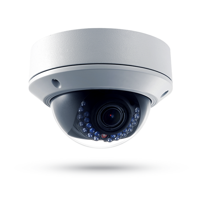 Loss Prevention Analytics® IP Weather/Vandal-Proof Dome Camera