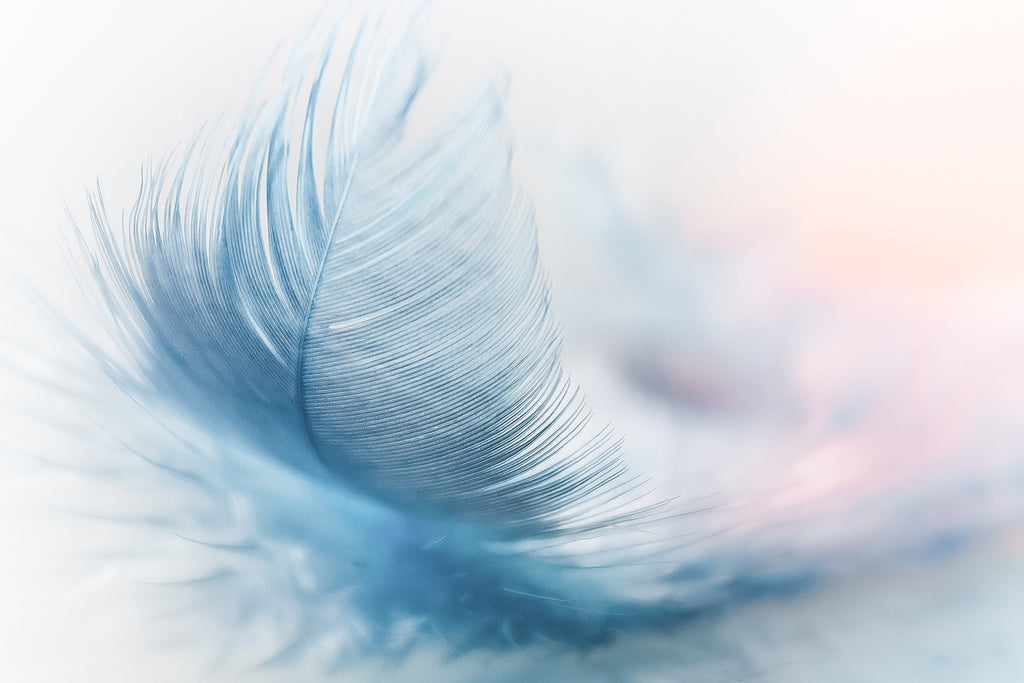 Feather ease slightly blue airy