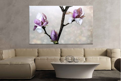Flower nature plant magnolia