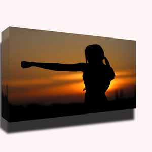 Karate sunset fight sports