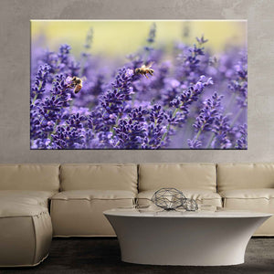 Lavender bee summer purple garden