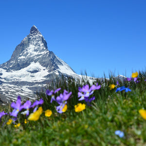 Matterhorn alpine zermatt mountains