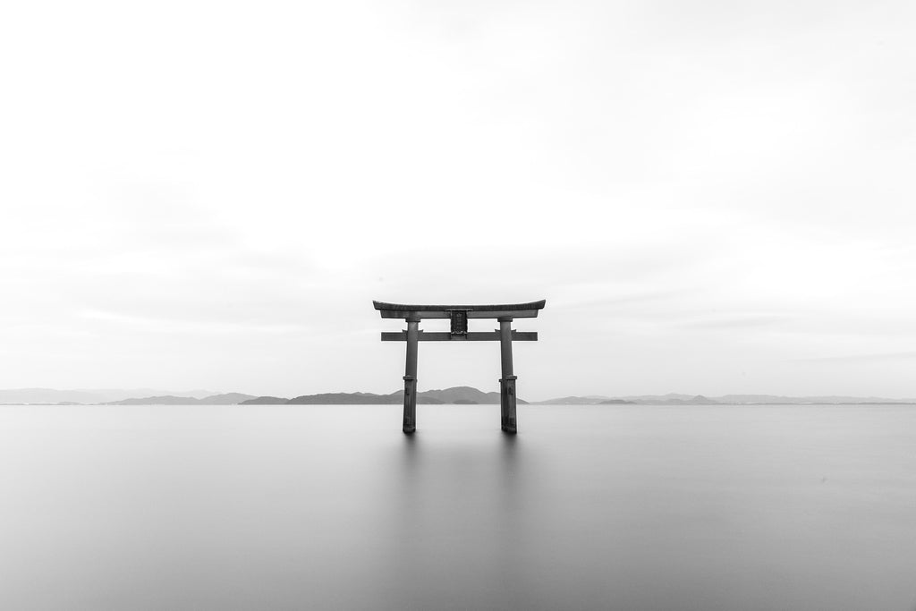 Tori torii shrine bw