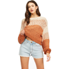 Blending In Cropped Sweater