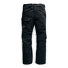 Mens Freedom Snow Pants '20