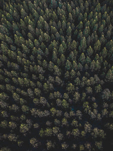 Nannup State Forest, South West, Australia. Aerial Print Aerial Poster Drone Photography Print Store. Fine Art Prints Australian Western Australia Beach. Aerial Photography - Drone Photography. Property of Aerial Waves