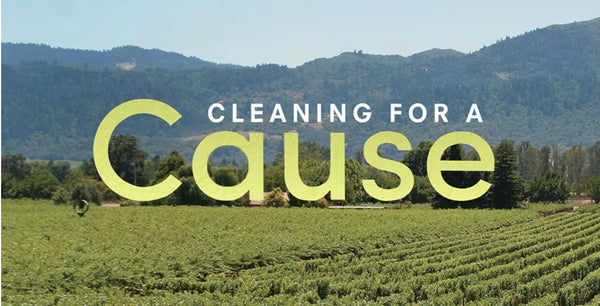 Cleaning For A Cause