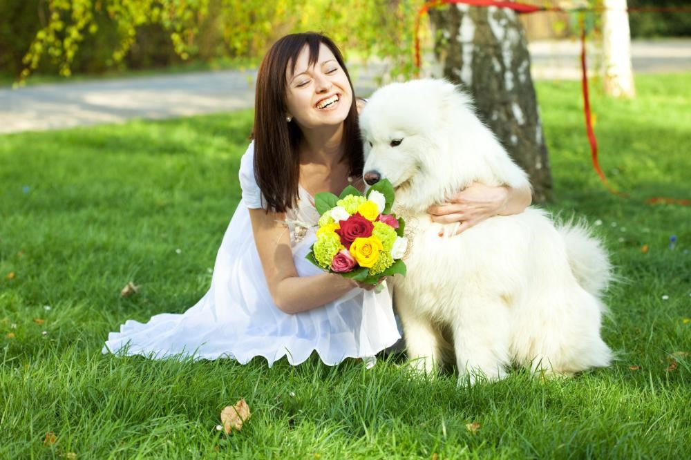 7 Brilliant Ways to Include Your Dog in Your Wedding