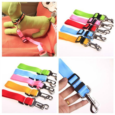 Dog Seat Belt in Various Colors