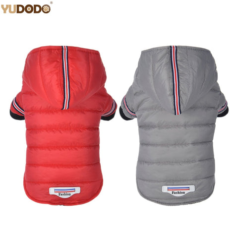 Winter Outdoor Hoodie Jacket  XS-XL