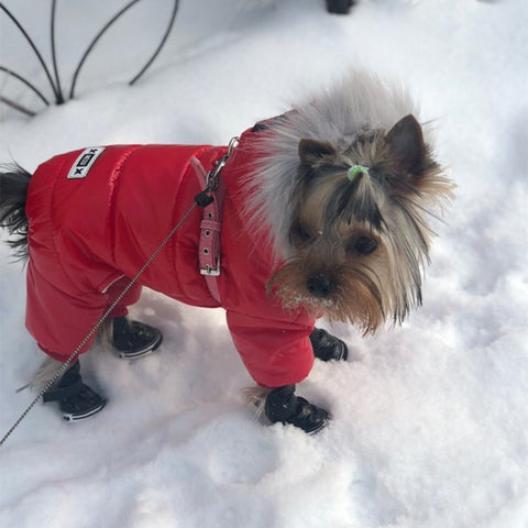 Thick Winter Overcoat for Puppies to Adult size Dogs