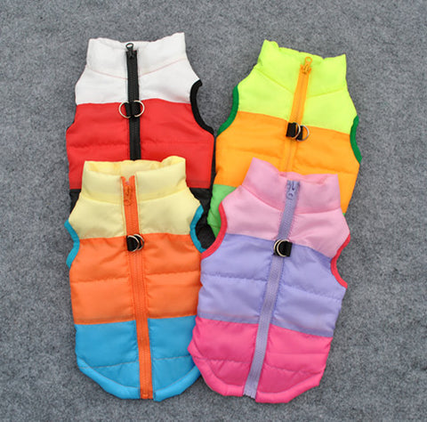 Windproof Dog Snowsuits in Various Styles