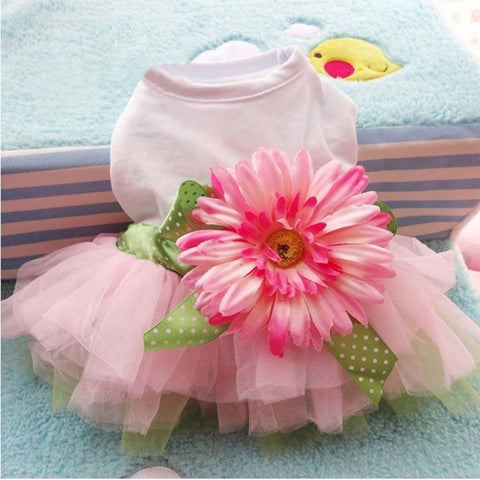 Adorable Summer/Spring Floral Tutu Dog Dress