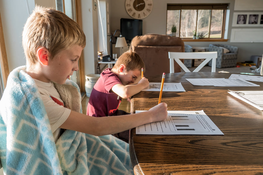 Avoid Home-Made Distractions When Learning At Home