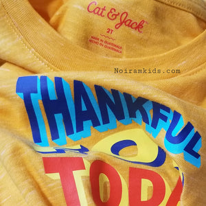 Cat Jack Thankful for the Day Shirt 2T NWOT View 2