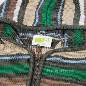 Crazy 8 Baby Boys Green Striped Hooded Sweater Used View 3