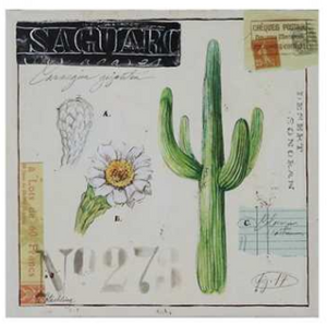 Cactus Canvas Artwork - The Desert Paintbrush