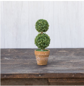 "Boxwood 8.25"" Small Double Topiary - 1 Left!"