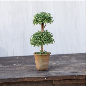 "Whimsical Boxwood 11.5"" Double Topiary"