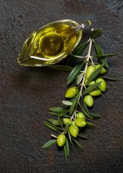 Discover the Many Benefits of Olive