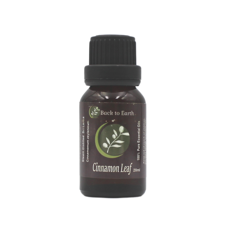 Cinnamon Leaf 100% Pure Essential Oil - 20mls