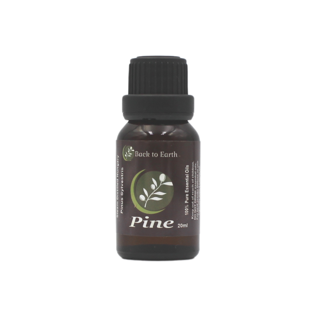 Pine 100% Pure Essential Oil - 20ml