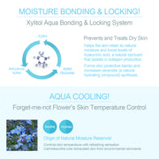 Ariul Facial Face Skin Serum Moisturizer, Aqua Blast Balancing Serum - Moisture Bonding & Locking with Xylitol, Aqua Cooling with Forget Me Not Flower Extract