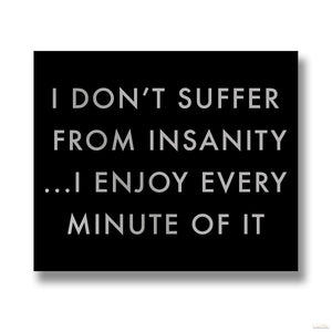 I Don't Suffer From Insanity Metalic Detail Plaque - LUXE Home Interiors
