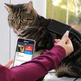 Lost cat being scanned with a PetScanner microchip reader