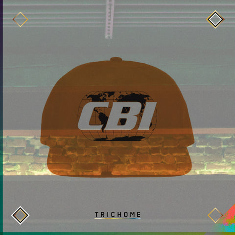 CBI Global Network Logo Cap