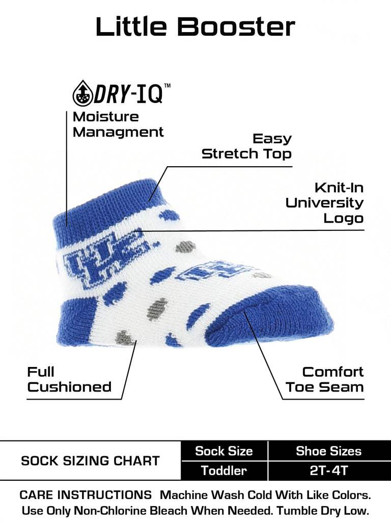 Kentucky Wildcats Toddler Socks Low Cut Little Fan