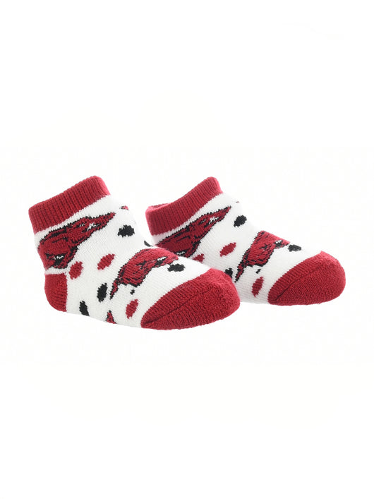 Arkansas Razorbacks Toddler Socks Low Cut Little Fan (Red/Black/White, 2T-4T) - Red/Black/White,2T-4T