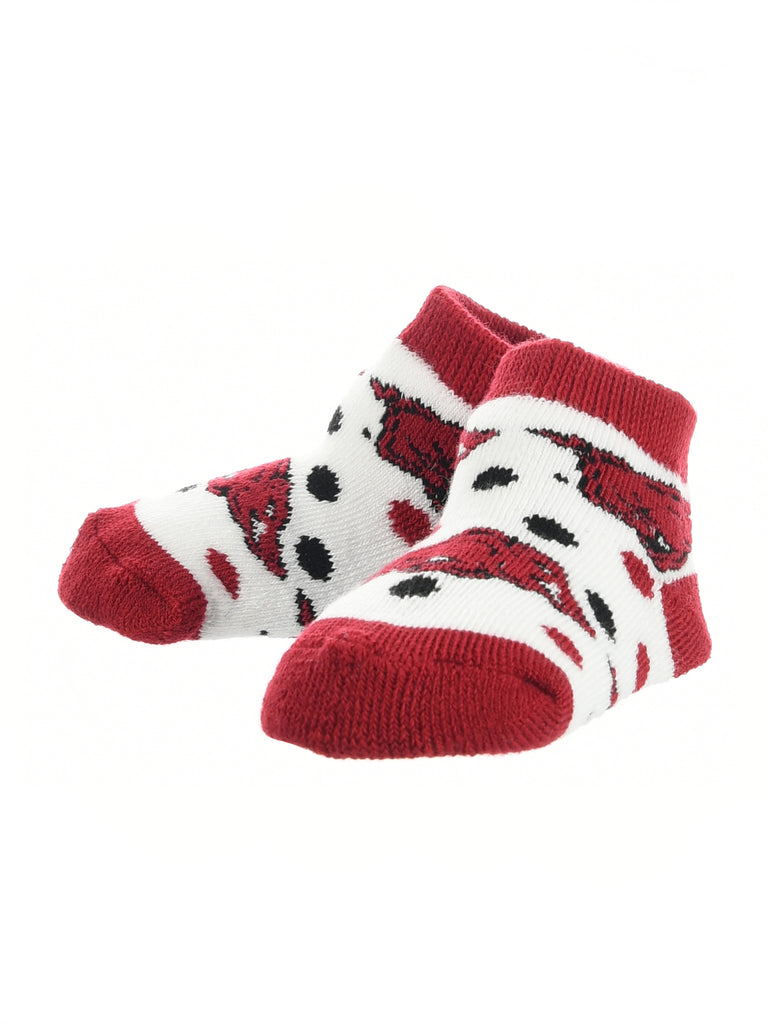 Arkansas Razorbacks Toddler Socks Low Cut Little Fan