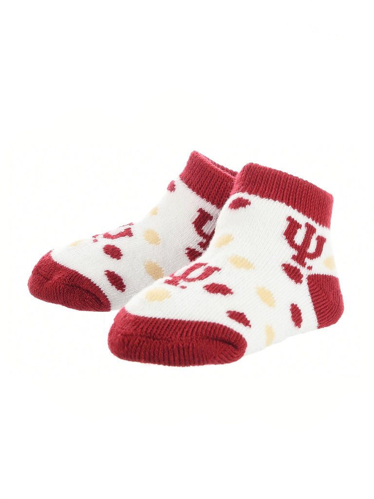 Indiana Hoosiers Toddler Socks Low Cut Little Fan