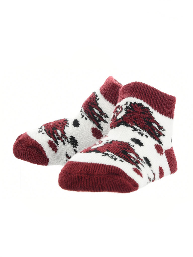 South Carolina Fighting Gamecocks Toddler Socks Low Cut Little Fan