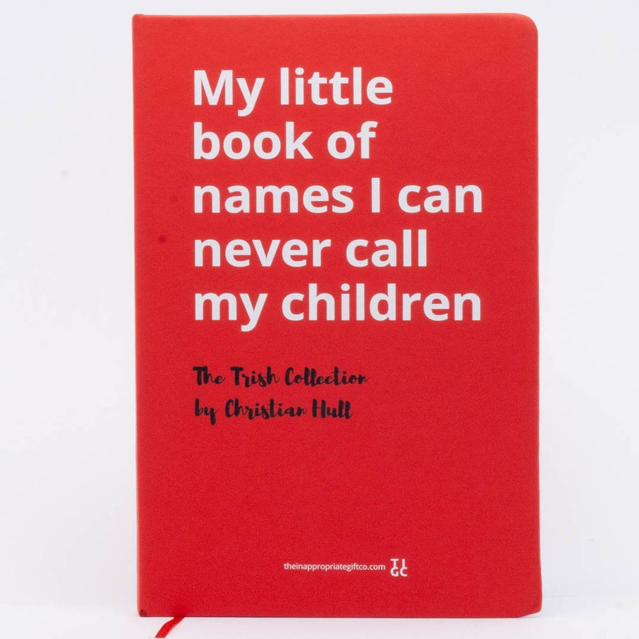 My little book of names I can never call my children TIGC The Inappropriate Gift Co