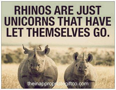 Rhinos are just unicorns TIGC The Inappropriate Gift Co