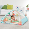 Skip Hop Farmstand Grow And Play Activity Gym