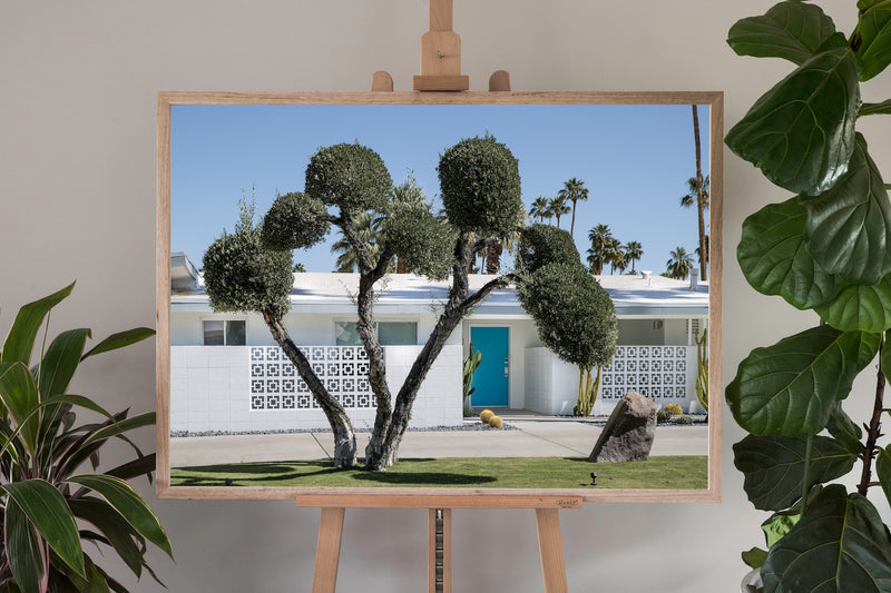 Palm Springs Fine Art Photography - 940 W Ceres Rd