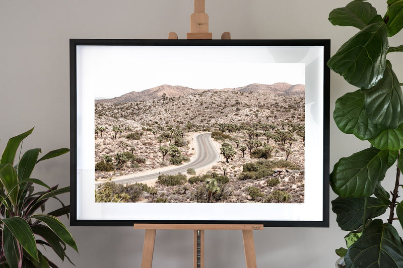 Joshua Tree Fine Art Photography - Driving Joshua