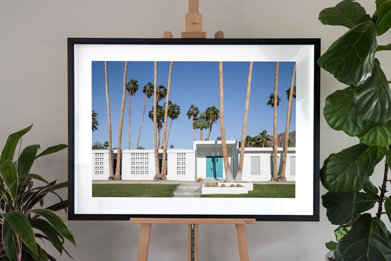 Palm Springs Fine Art Photography - Giant Palms
