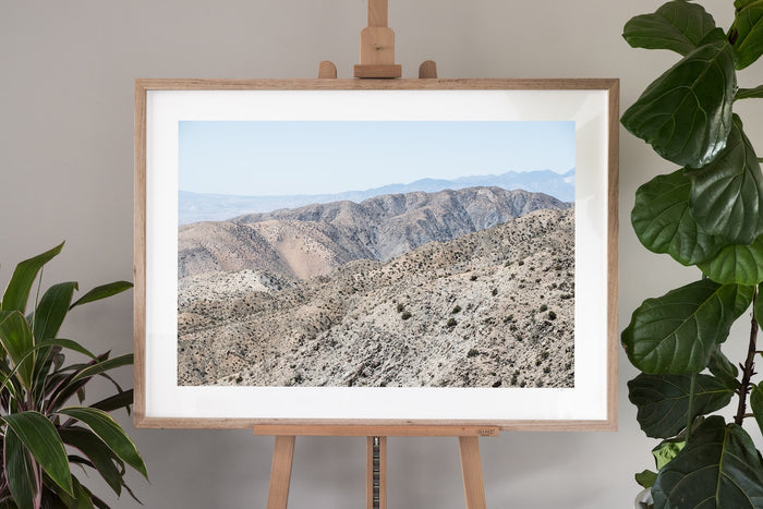 Joshua Tree Fine Art Photography - Terrain